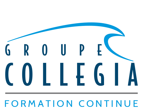 Moodle Groupe Collegia
